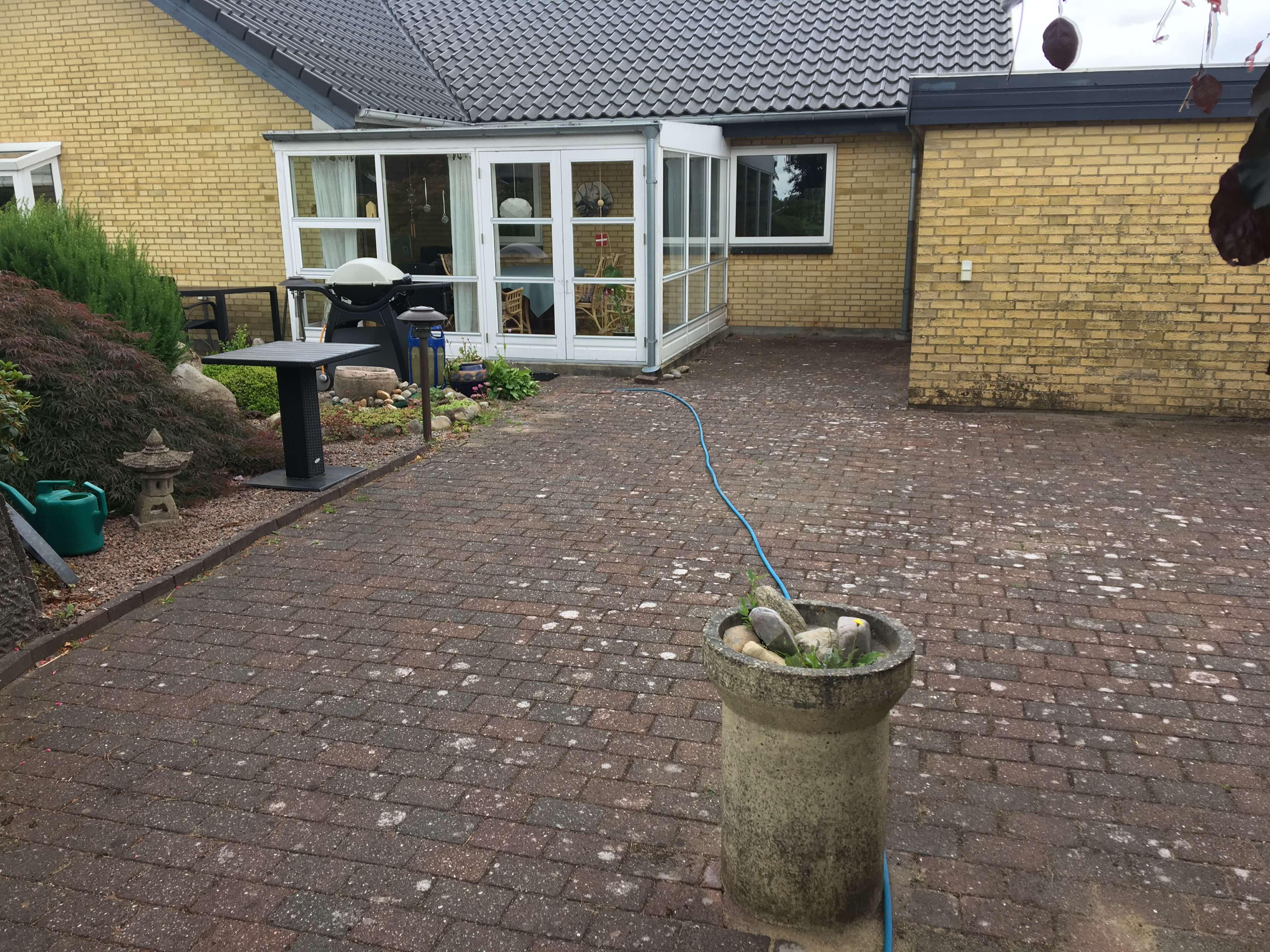 Have med fliser med flisepest